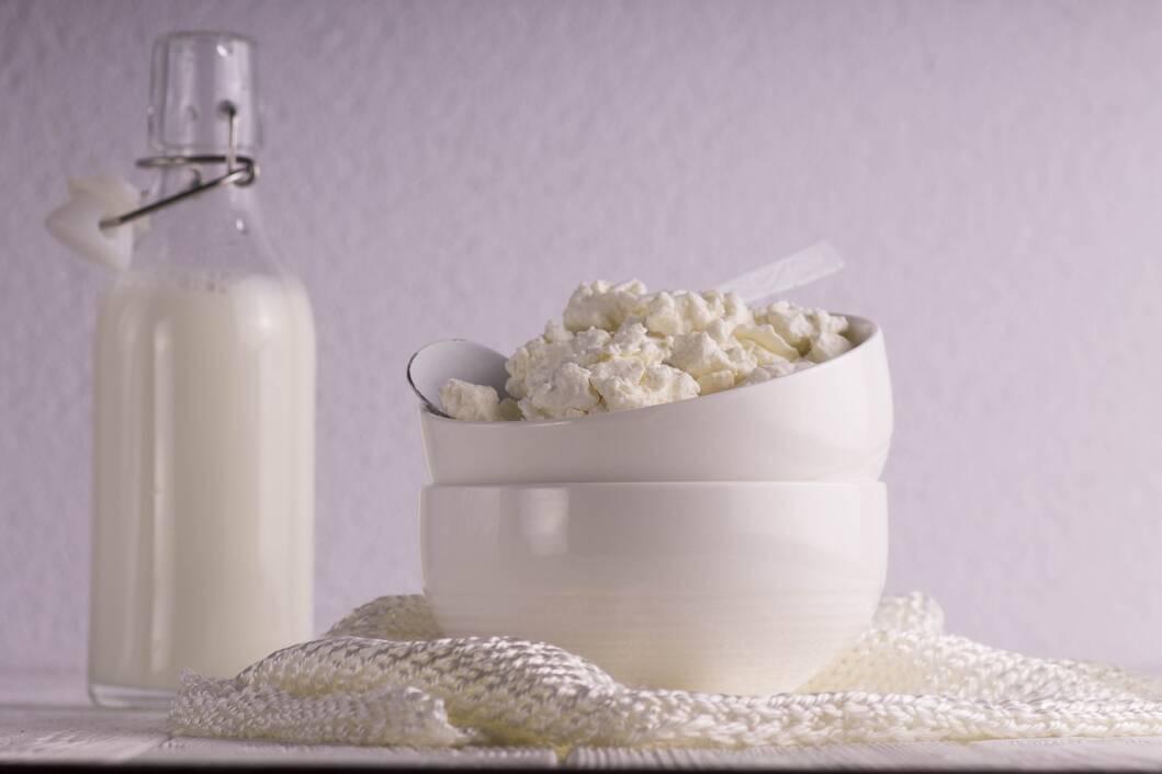 Domaći mliječni proizvodi