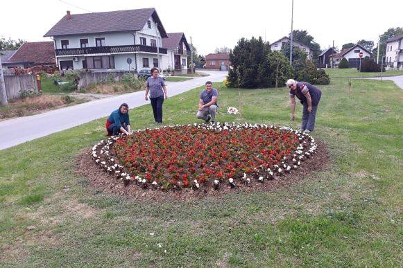 Članice Udruge Ivanečko srce uređuju kružni tok u Koprivničkom Ivancu