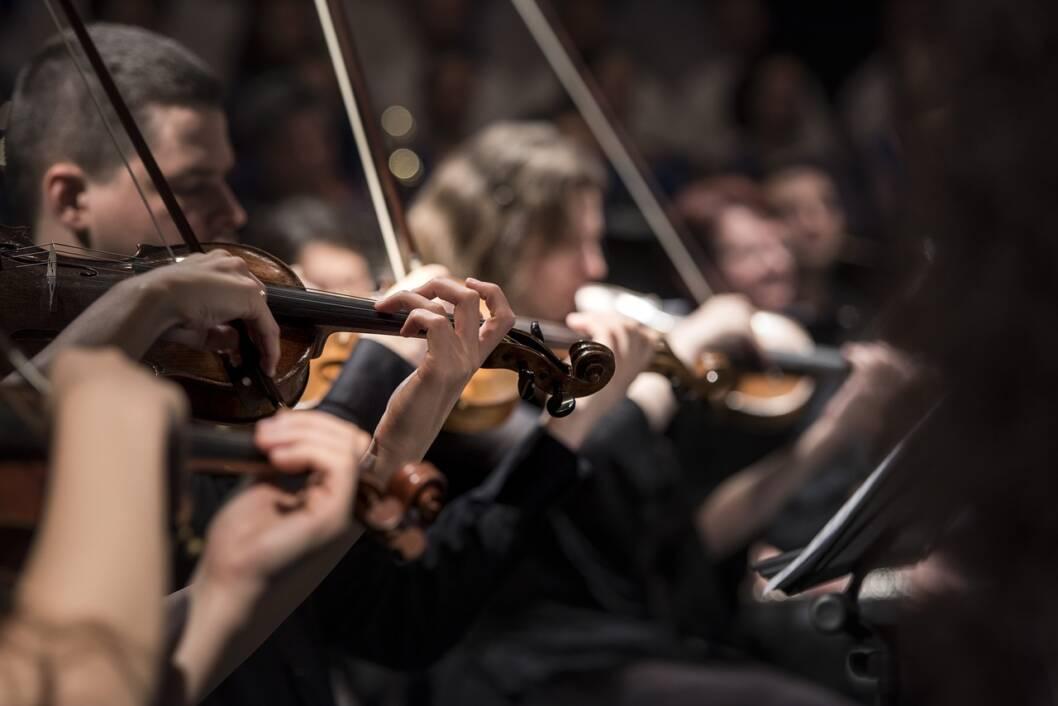 Glazbenici sviraju violinu na koncertu