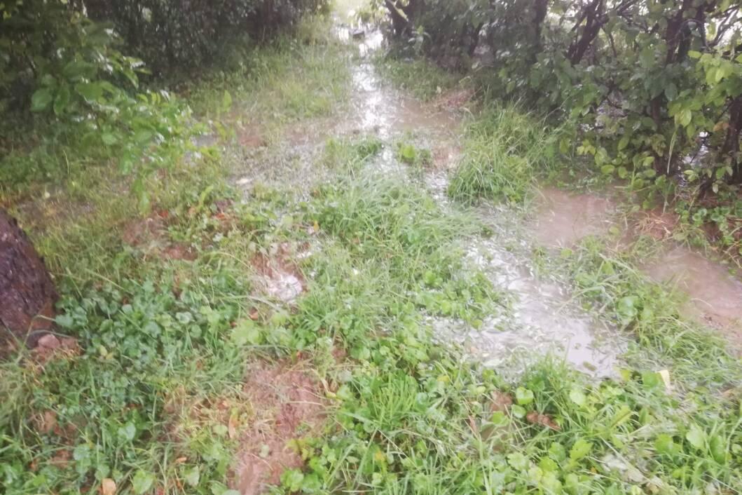 Poplava zbog kiše u Starigradu