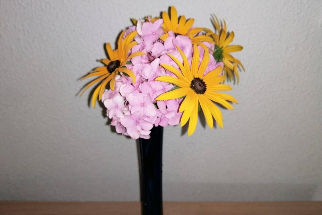 Cvijet hortenzije kao baza buketu cvijeća