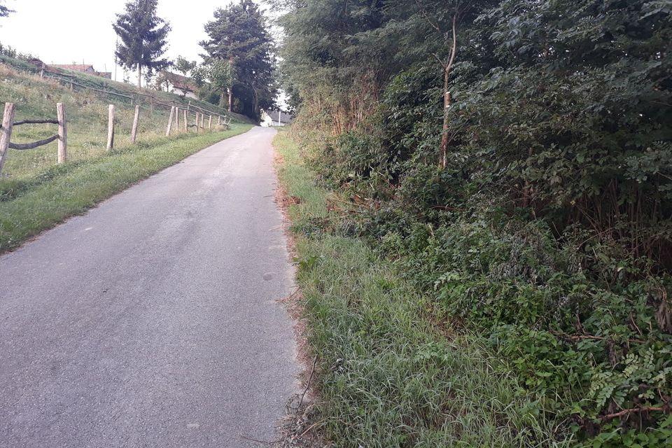 Nerazvrstane ceste na području Općine Novigrad Podravski