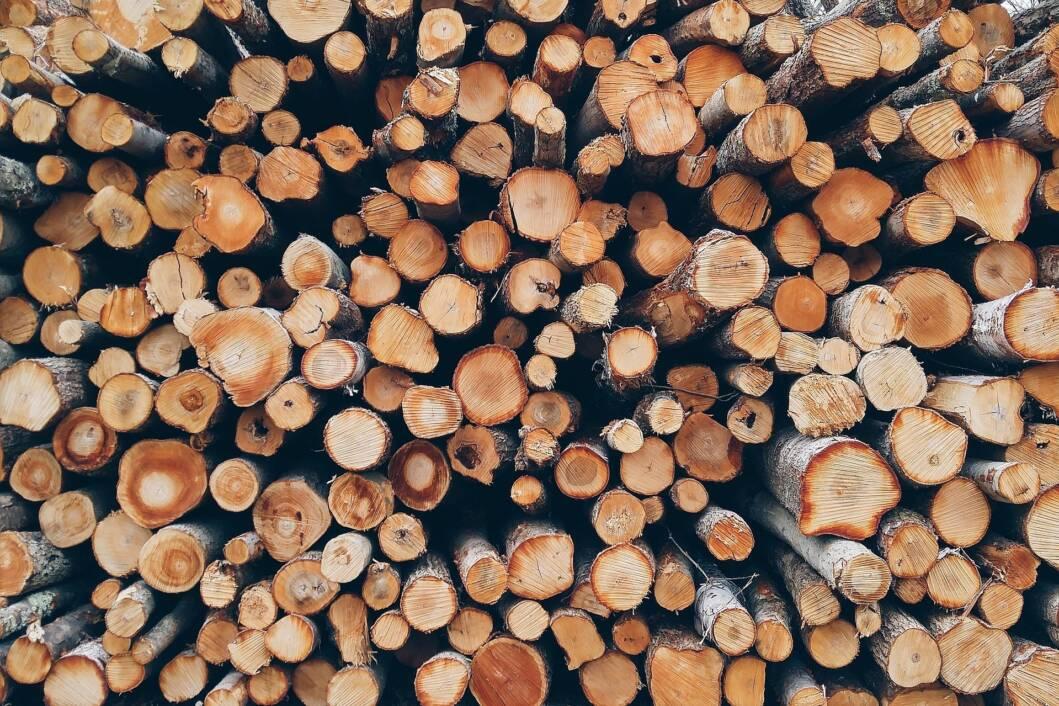 Drva/Šuma