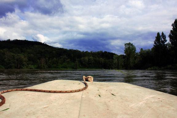 Jezero/voda/Legrad