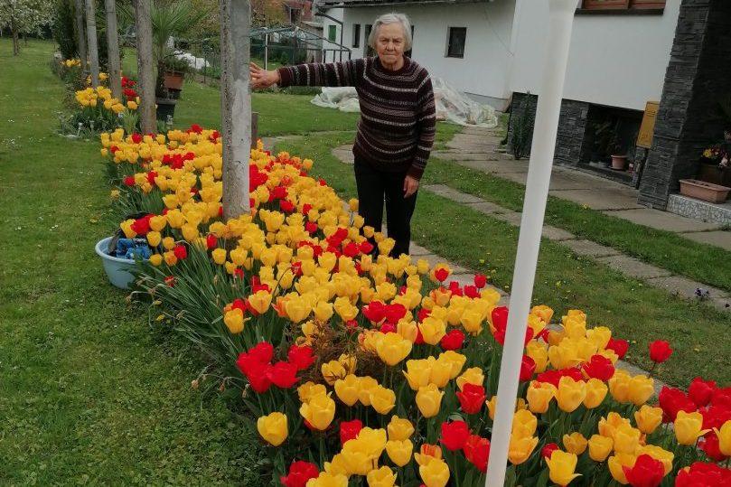 Nada Petković i njezini tulipani